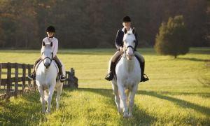 Pferde-Erlebnistag Reitschule Lichtenhorst