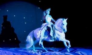 Tickets Palast der Pferde