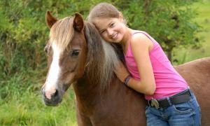 120 Min. Fotoshooting fürs Pferd – Nur 49,90 € bei Groupon