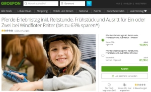Reitstunde Groupon