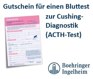Gutschein für einen Bluttest zur Cushing-Diagnostik Boehringer Ingelheim