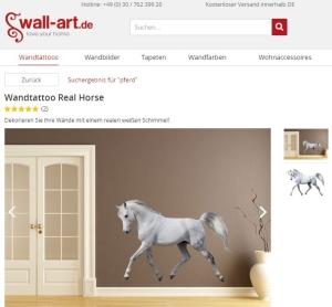 Weißes Pferd Schimmel an Wand