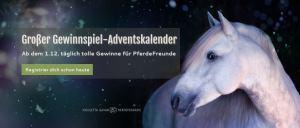 Gewinnspiel-Adventskalender PferdeTermine