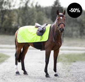 Refelektierende Decke auf Pferd