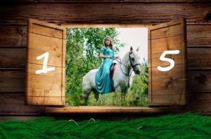 Shooting mit Pferd im Adventskalender Türchen 15