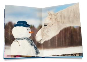fotobuch Schneemann mit Pferd von fotokasten