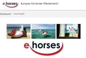 Einhorn-Luftmatratze bei ehorses gewinnen