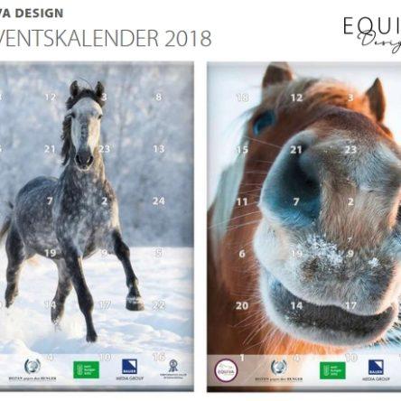 EQUIVA Adventskalender 2018 – Spenden und gewinnen