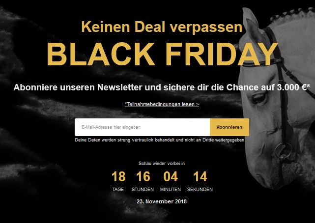 Black Friday Newsletter Horze