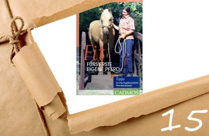 Adventskalender Tag 15 - Firt fürs eigene Pferd