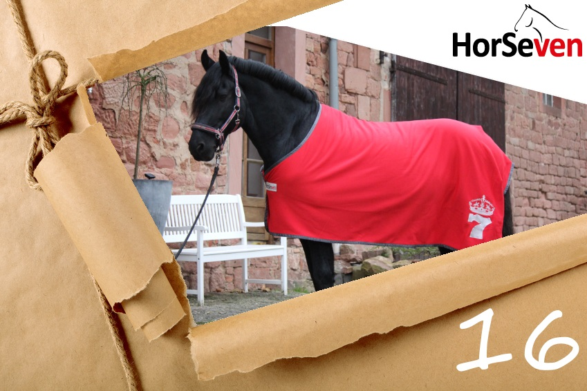 adventskalender 16 dezember 2017 reiter pferde deals. Black Bedroom Furniture Sets. Home Design Ideas