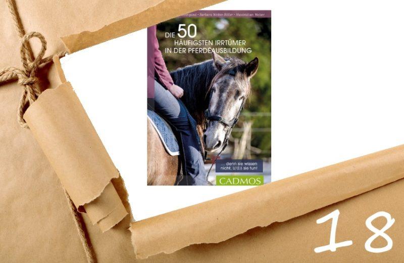 Adventskalender Tag 18 - Die 50 häufigsten Irrtümer in der Pferdeausbildung