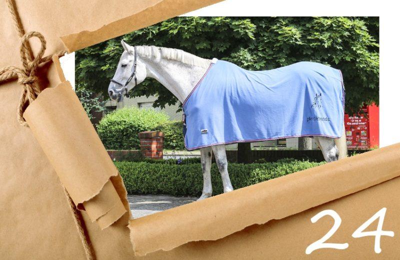 Adventskalender 2017 - Tag 24 pferdetrends