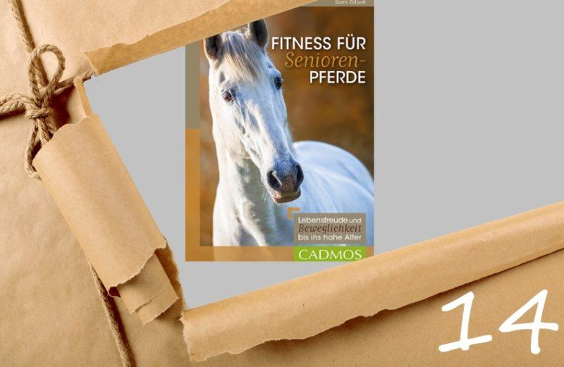 Adventskalender 2018 Tag 14 - Fitness für Senioren-Pferde