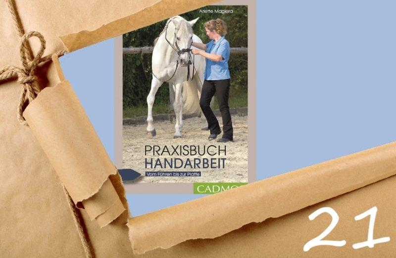 Adventskalender Türchen 21 - Praxisbuch Handarbeit
