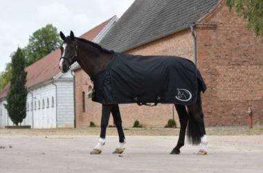 Kategorie Pferd
