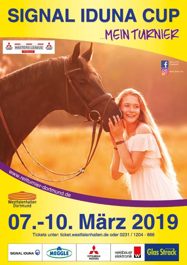 Amelie Benfer Plakatwettbewerb Signal Iduna Cup 2019