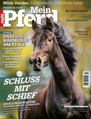 3-4-Monats-Abo Mein Pferd gratis bei Groupon