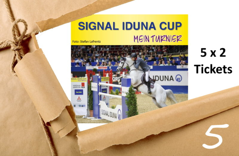Adventskalender 5/2019 Tickets Signal Iduna Cup