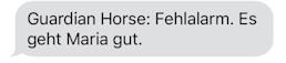 Guardian Horse Entwarnung - Marias Produkttest