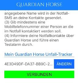 Screenshot - Guardian Horse Unfall-Tracker ist verbunden