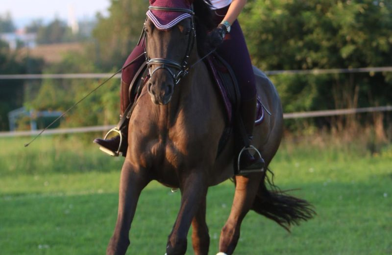 Johanna mit ihrem Pferd Kia'Ora