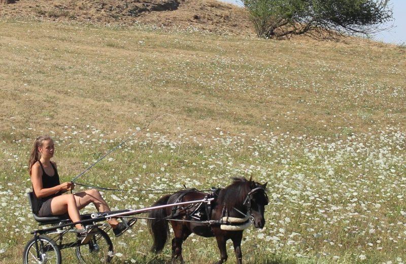 Guardian Horse Produkttesterin Johanna Maria und ihr Pony Hechizo (Chito)