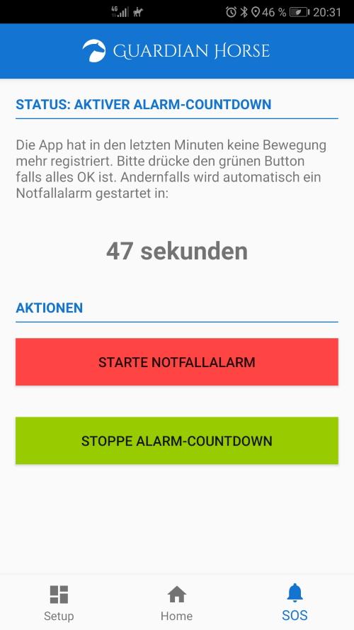 Guardian Horse Alarm Countdown Johanna Steindl