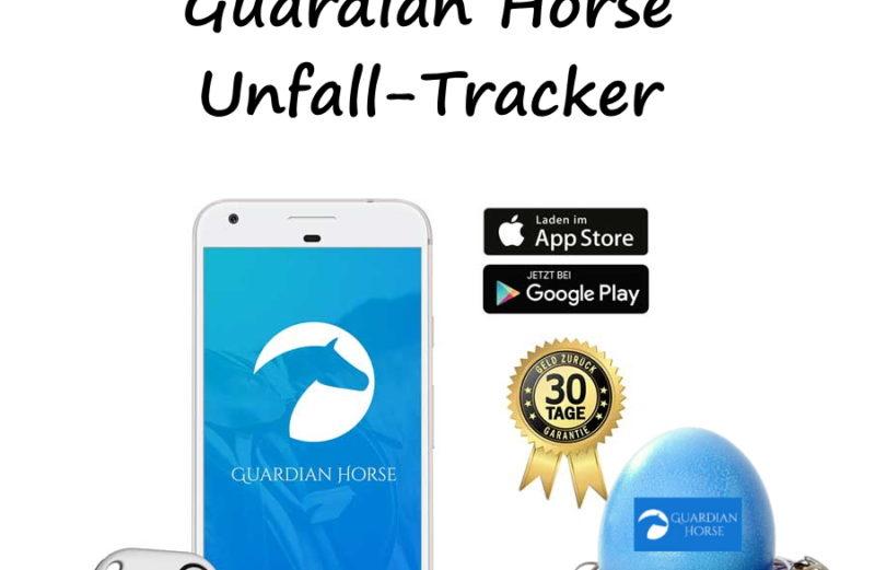 Oster-Gewinnspiel 2020 - Guardian Horse Unfall-Tracker