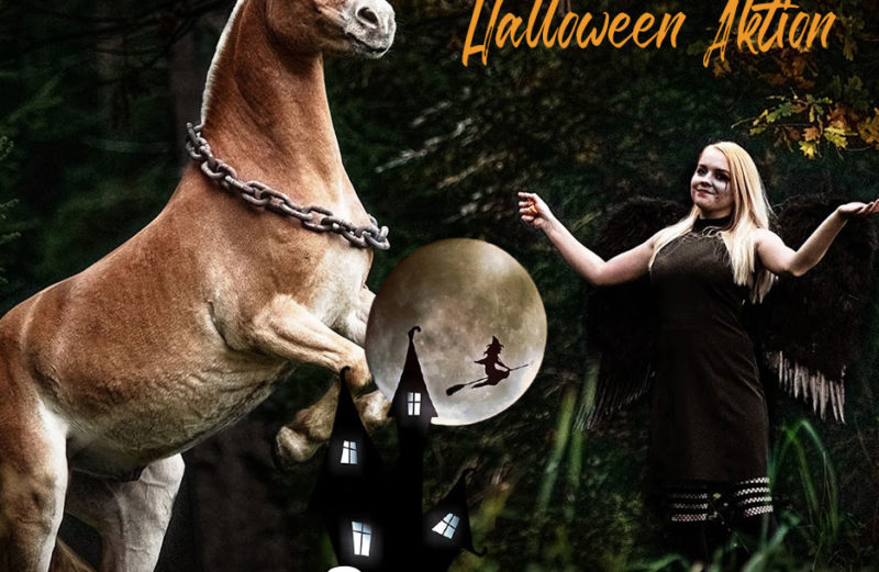 RidersDeal Halloween Aktion
