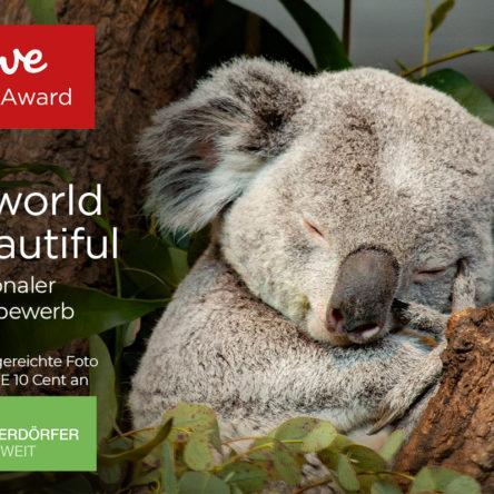 CEWE Fotowettbewerb – 1.000 Preise im Gesamtwert von 250.000 €