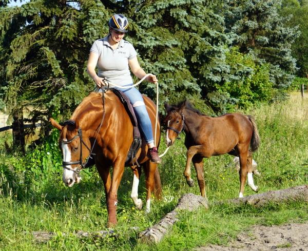 Gina Priss reitet im Wald mit Fohlen am Strick