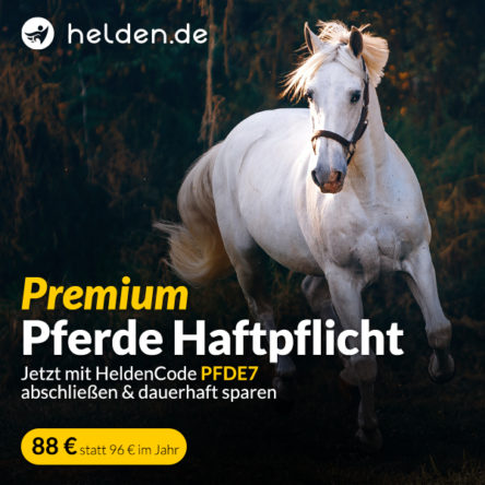 Pferdehaftpflicht Versicherung bei Helden.de für 88 €/Jahr mit unserem Helden Code