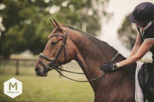 ManukaVet Pferde Wundschutzcreme