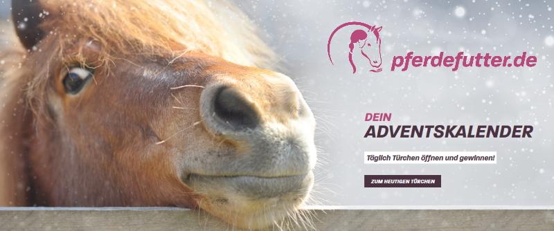 pferdefutter.de Adventskalender Gewinnspiel