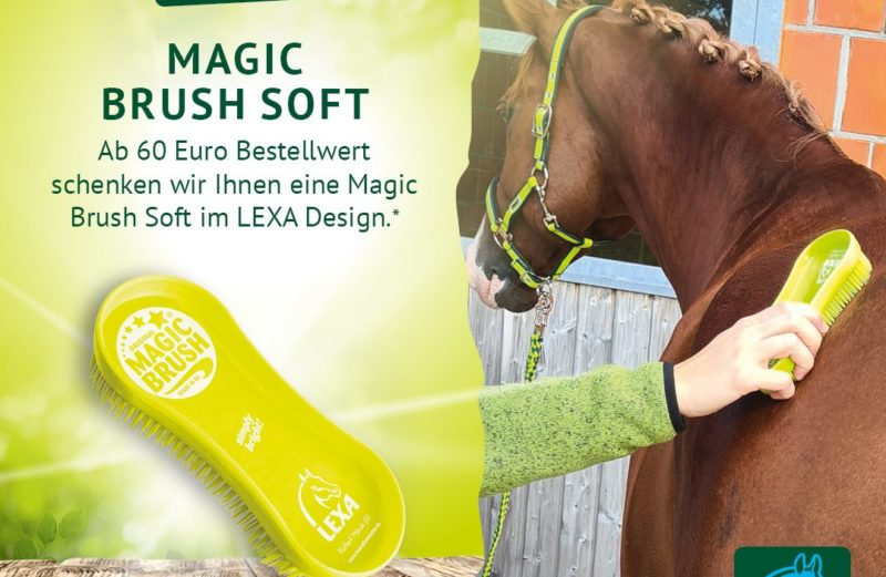 Magic Brush Soft gratis in der LEXA März-Aktion