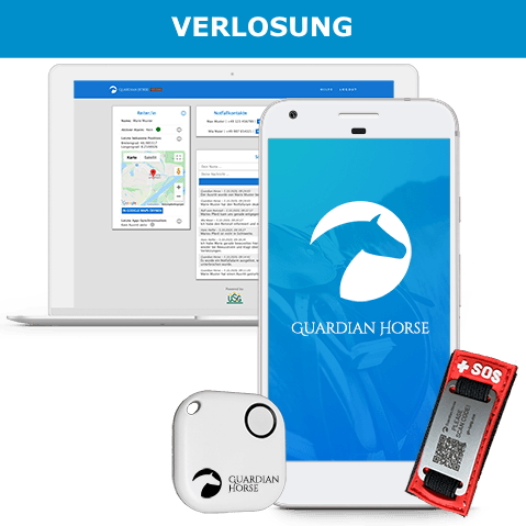 VERLOSUNG Guardian Horse HelpMe Badges