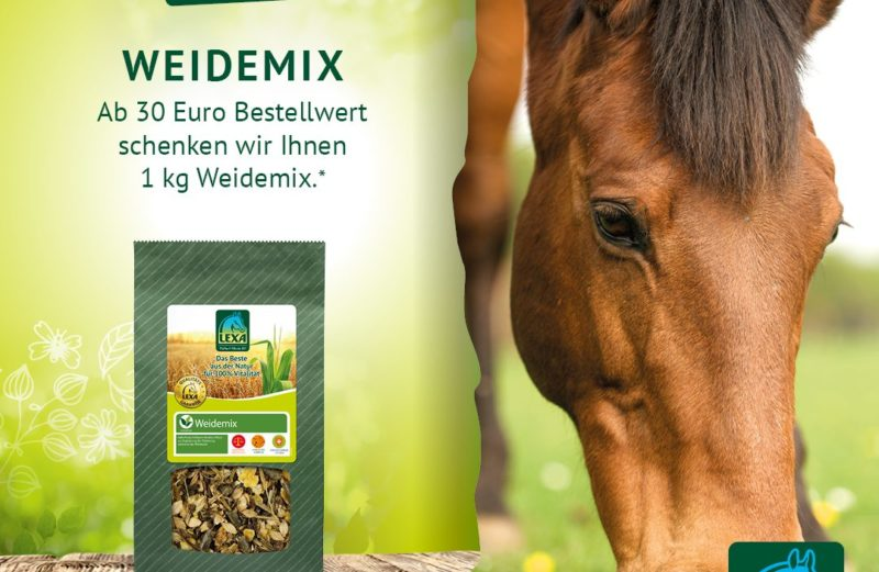 LEXA Monatsaktion Weidemix gratis