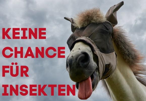Horse Shop Keine Chance für Insekten